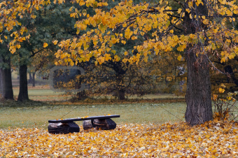 bench in the autumn landscape