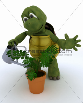 tortoise with  watering can feeding a plant