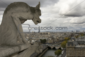 The gargoyle of Notre Dame - Paris, France
