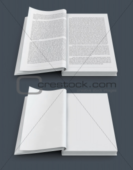 open spread of books with blank white pages
