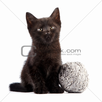 Black kitten with a woolen ball