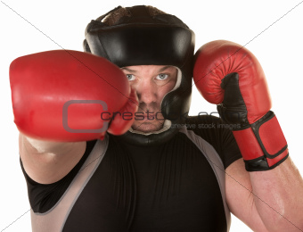 European Boxer Punching