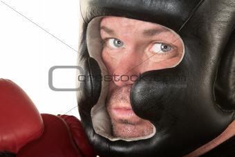 Serious Boxer Close Up