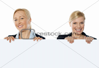 Portrait of smiling corporate women