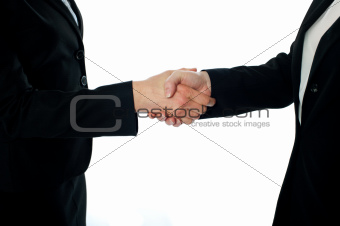 Business deal, handshake