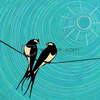 Swallows card.