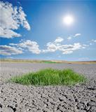 sun over drought land