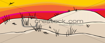 Pretty Sand Dunes