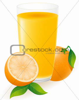 orange juice vector illustration