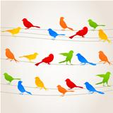 Bird on a wire5