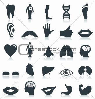 Body Icons