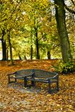 Bench in park in autumn