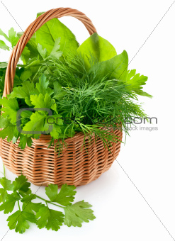 green herbs in braided basket