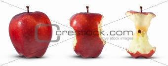 Apple core eaten