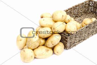 Fresh new potatoes in rustic basket isolated on white background