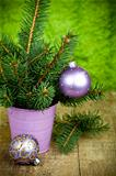 christmas fir tree and purple decorations