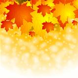 Colourful autumn background