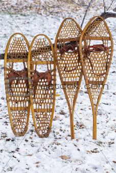 Bear Paw and Huron snowshoes