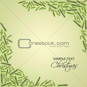 Fir tree branch frame with copy space