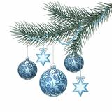 Blue christmas balls on green spruce branch.