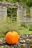 Fall pumpkin at the ruins