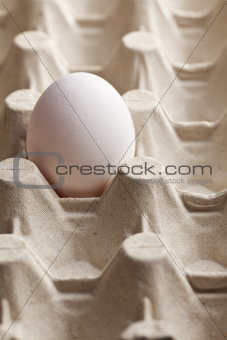 white egg in carton