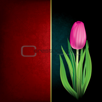 abstract grunge background with tulip