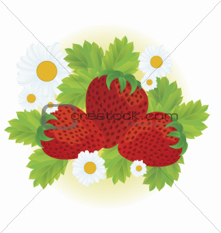 Strawberries and daisy flowers