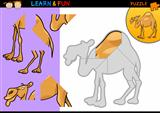 Cartoon dromedary camel puzzle game