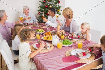 Smiling adults raising their glasses at christmas dinner