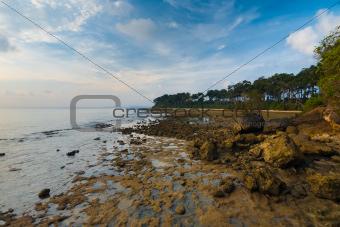 Neil Island Landscape Andaman Rocky Coast