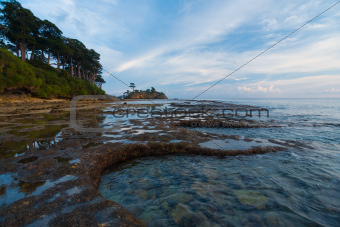 Tide Pools Coast Neil Island Andaman Landscape