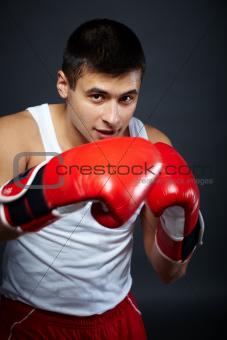 Male boxer