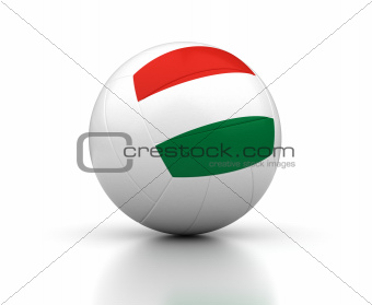 Hungarian Volleyball Team