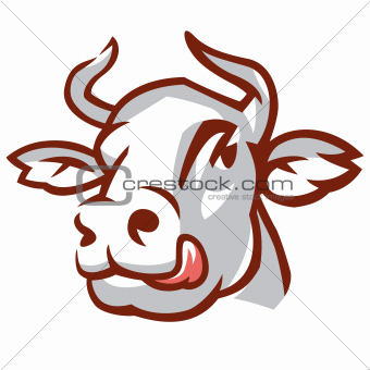 Head of White Cow