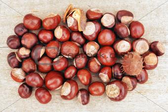 Chestnut pile