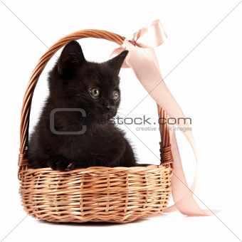 Black kitten in a wattled basket with a ribbon
