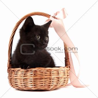 Black kitten in a wattled basket with a ribbon