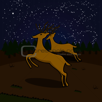 Reindeers on a field at night