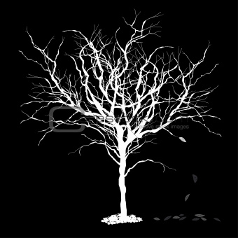 Tree silhouettewith fallen leaves. Vector illustration, EPS8.