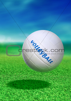 volleyball on green ground