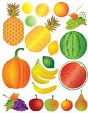 Fruits Set Illustration