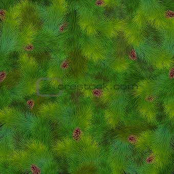 Christmas fir tree texture