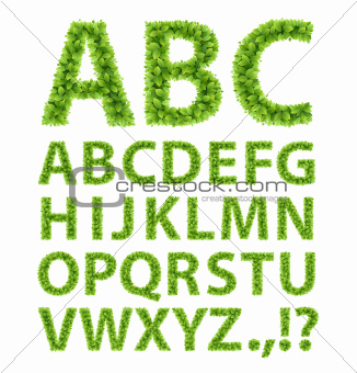 Green Leaves font