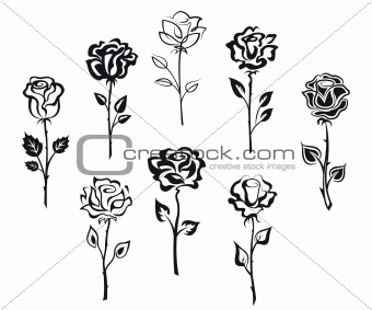 Set of rose flowers