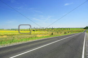 Road and green field