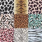 animal skin texture set