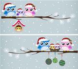 Owl christmas celebration design vector