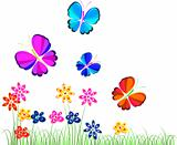 flowers and butterflies, illustration, vector