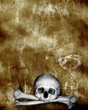Human skulls and bones